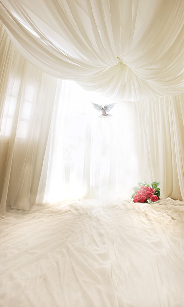 white bed sheets background. 6.5ft Length*5ft Width White Curtain Window Bed Sheet Pigeons Floor Backdrops Photography Sheets Background