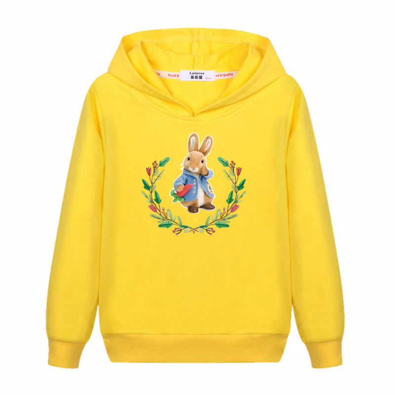 d4fec6df9b6d8 2018 Cartoon Peter Rabbit Sweater baby girl's Cute cotton casual hoodie  Kids Fashion autumn winter clothes boys child 3-14T coat