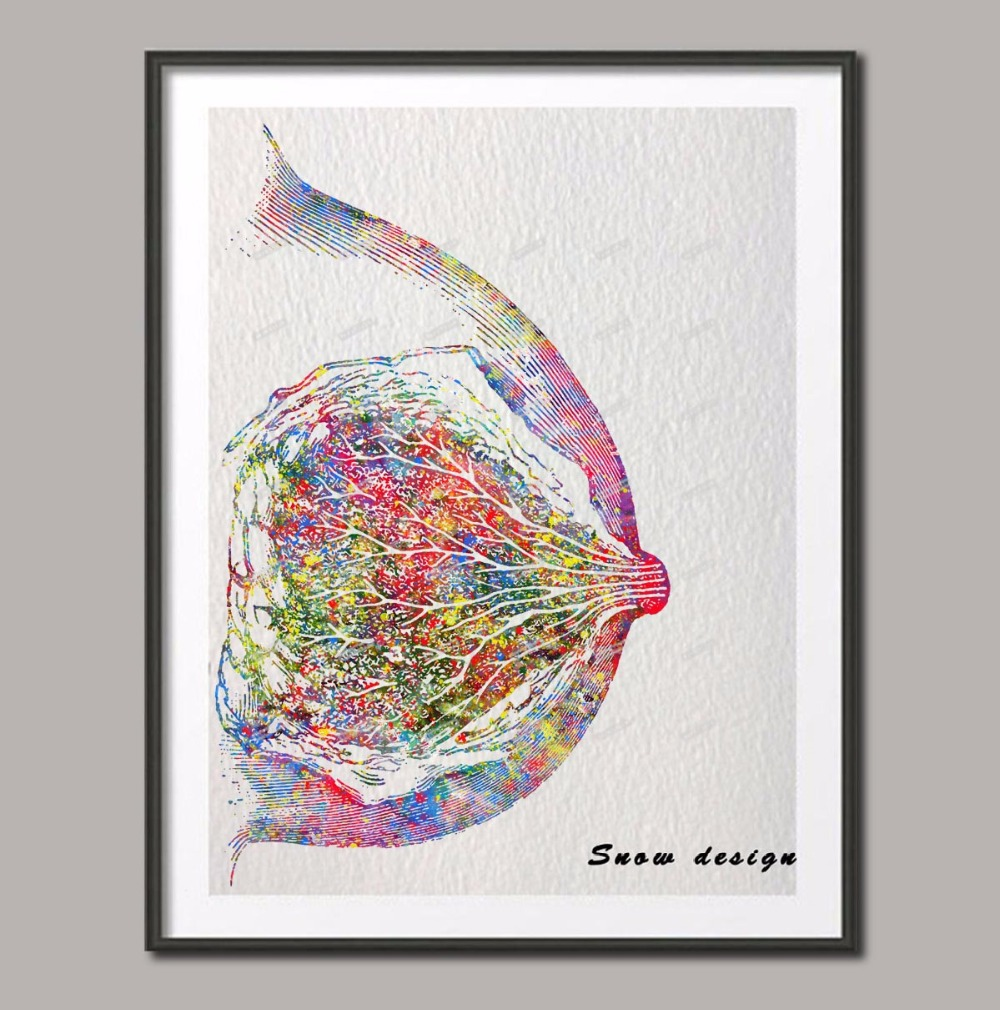 Original Watercolor Breast Anatomy Canvas NON Diamond Painting Medical Mammary Wall Art Poster Print Pictures Wedding Decoration