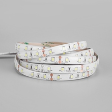 2835/3528 RGB Led Flexible Tape Light Strip 12V Color Changing Light For Christmas And Home Decoration Red/g'r