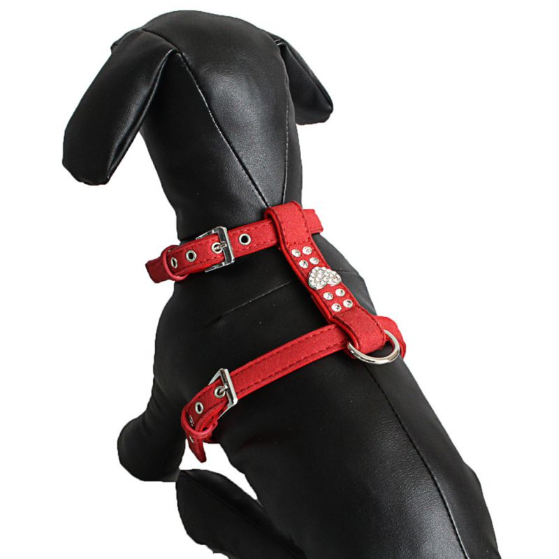cute dog harness and leash