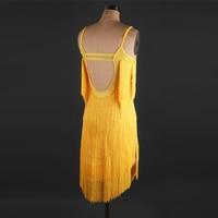 Latin American Dance Dress Latin dress skirt