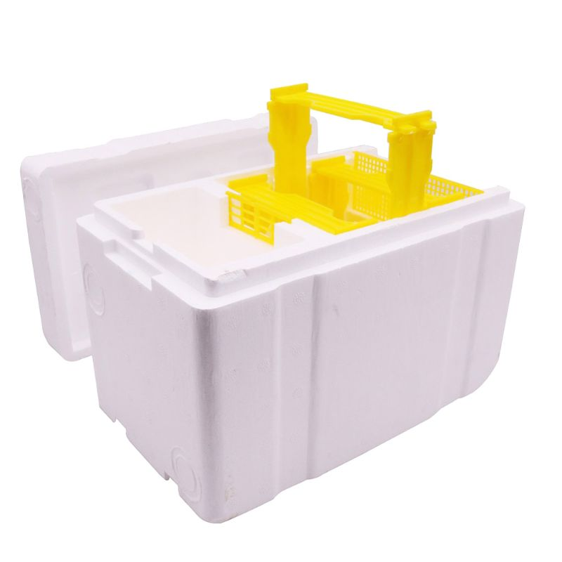 Bee Hive Beekeeping King Box Pollination Box Foam Frames Beekeeping Tool Kit-in Beekeeping Tools from Home & Garden