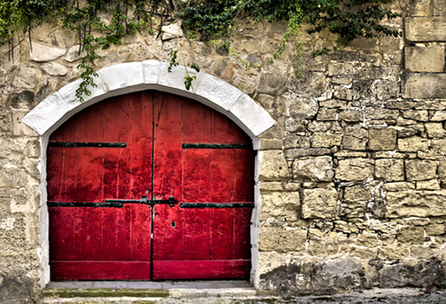 Superieur Red Door Photography Background Brick Wall Art Photo Backdrops Cloth Green  Leves Decoration
