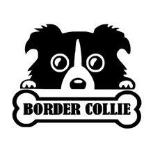 13.5cm * 11cm kişiselleştirilmiş hayvan sınır Collie kişilik kemik sevimli moda araba çıkartmaları C5-0836