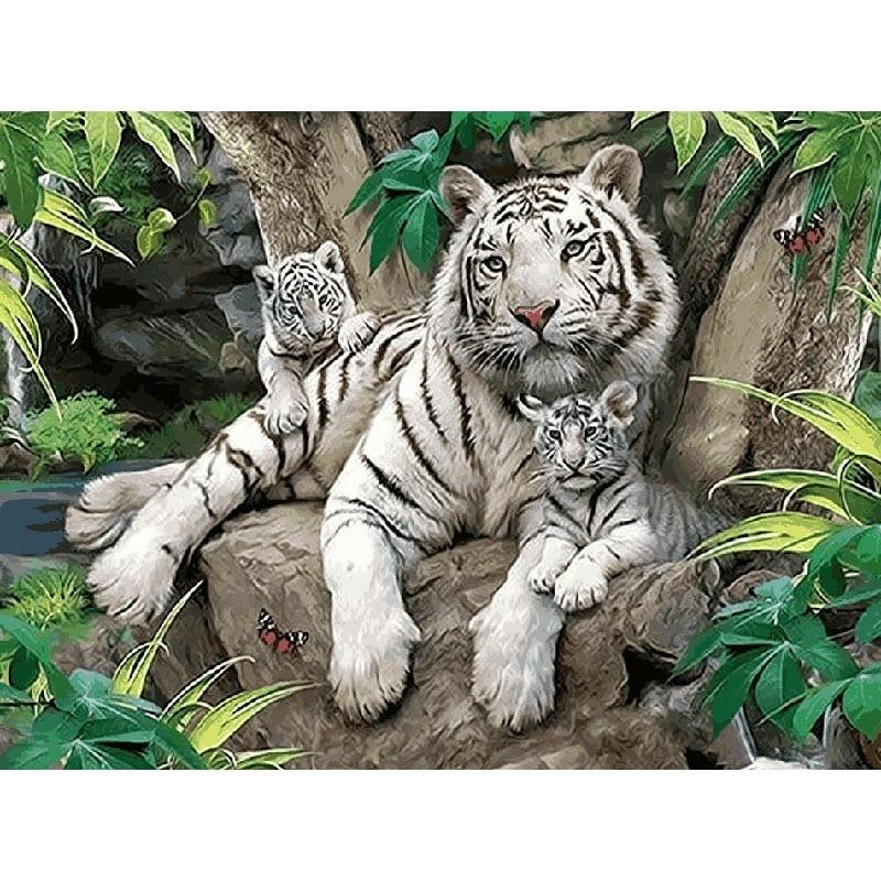 Sin marco blanco tigres DIY pintura por números animales acrílico pared del arte moderno pintura de la lona para el regalo único 40x50 cm