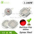High Power Grow Chip 1W 3W 10W 20W 30W 50W 100W Deep Red 660Nm DIY LED Grow Light 1 3 10 20 30 50 100W Watt For Plant Growth