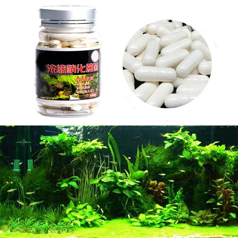 60pcs Aquarium Nitrobacteria Capsule For Water Treatment Bio-Nitrobacteria Capsule Fish Tank Pond Cleaning Water Supplies