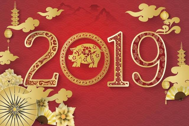 New Year 2019 Chinese Spring Festival The Year Of Pig Gold Flower