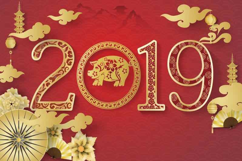 detail feedback questions about new year 2019 chinese