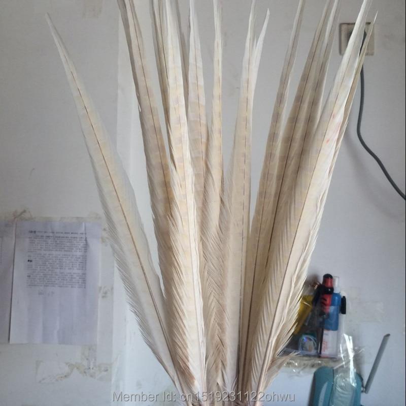 Wholesale 100pcs beautiful Beige pheasant feather 18 20 inch 45 50 cm DIY decorative