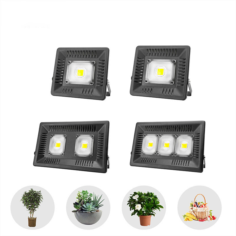 AC220V 110V LED Growing Floodlight 30W 100W 150W Warm Cold White Plant Lamp For Greenhouse Outdoor Hydroponics Seeding Planting