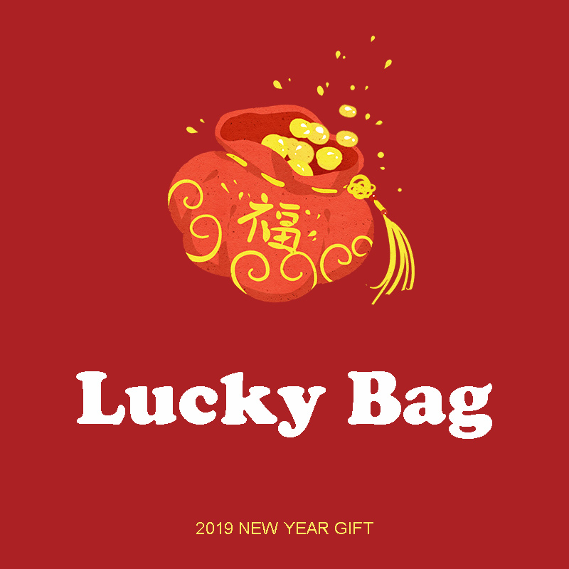 2019 NEW YEAR GIFT ---Lucky Bag