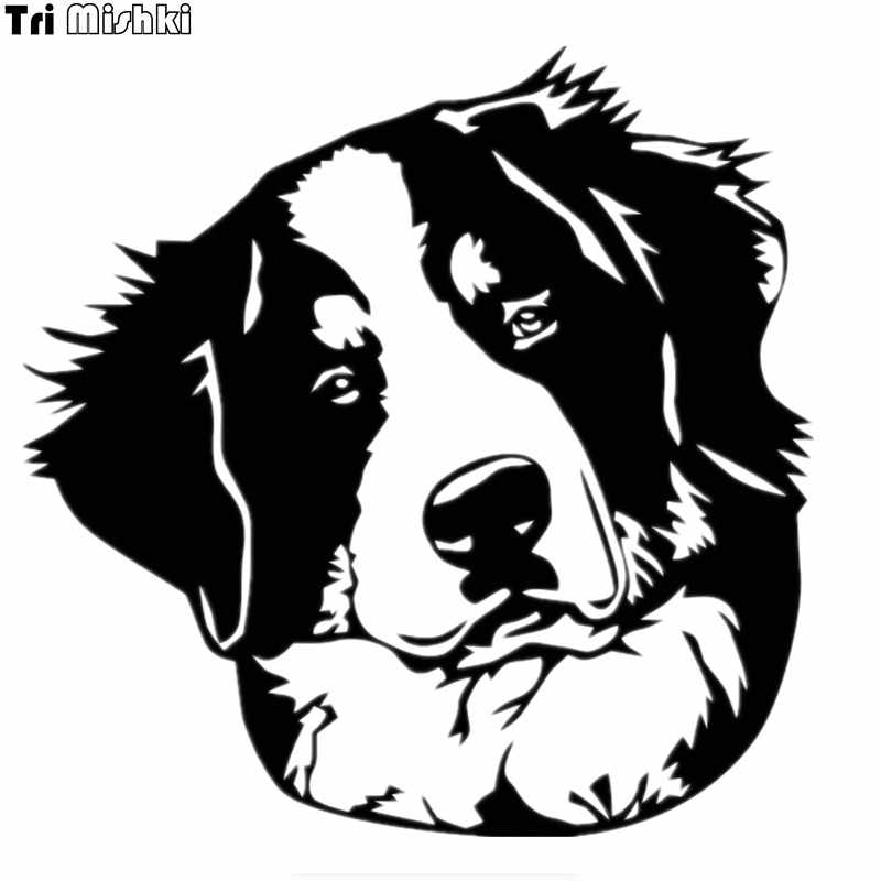 Detail Feedback Questions About Forudesigns Bernese Mountain Dog Pet