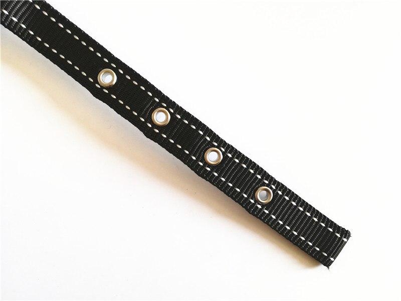 Dog Collar and Leash Set (11)