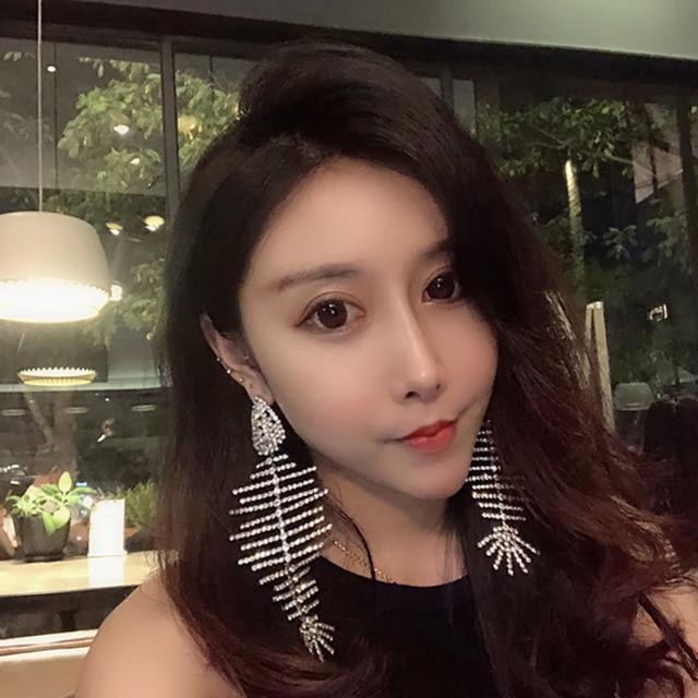 New Hyperbole Fish Bone Earrings S925 Silver Ear Needle Fish Shape Design Full Cubic Zirconia Drop Earrings For Women