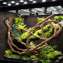 1.5/2.5/3m Large Flexible Vines Habitat Decor Bendable Jungle Climber Reptile Pet Supplies Reptiles Terrarium Decoration(China)