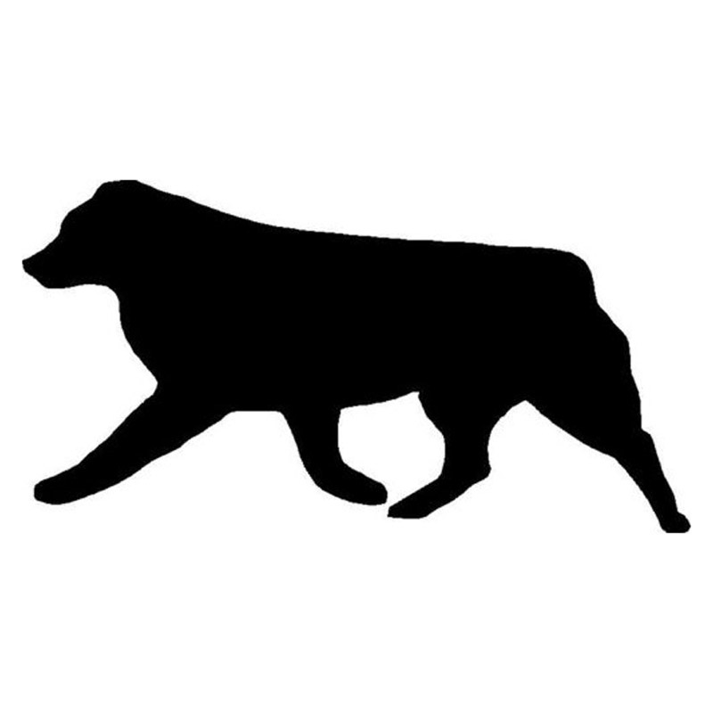 Cars Windows and more Dark Spark Decals Finn The Australian Shepherd Dog D/écor Laptops Vinyl Decal for Indoor or Outdoor use