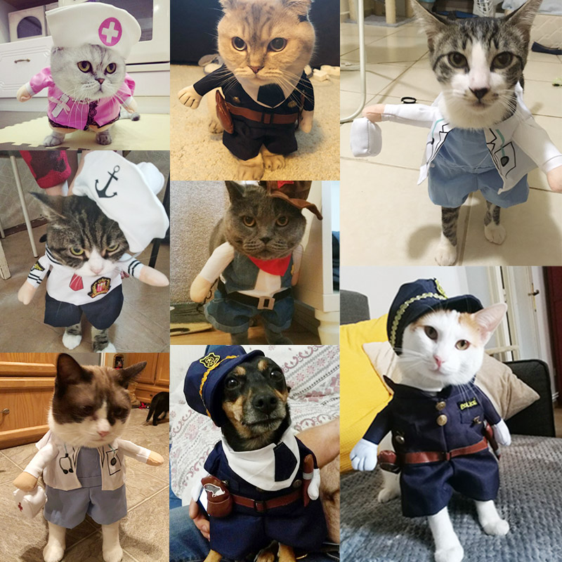 46be10db492ca 2019 Funny Cat Clothes Sex Nurse Suit Clothing Costume For Cat Cool ...