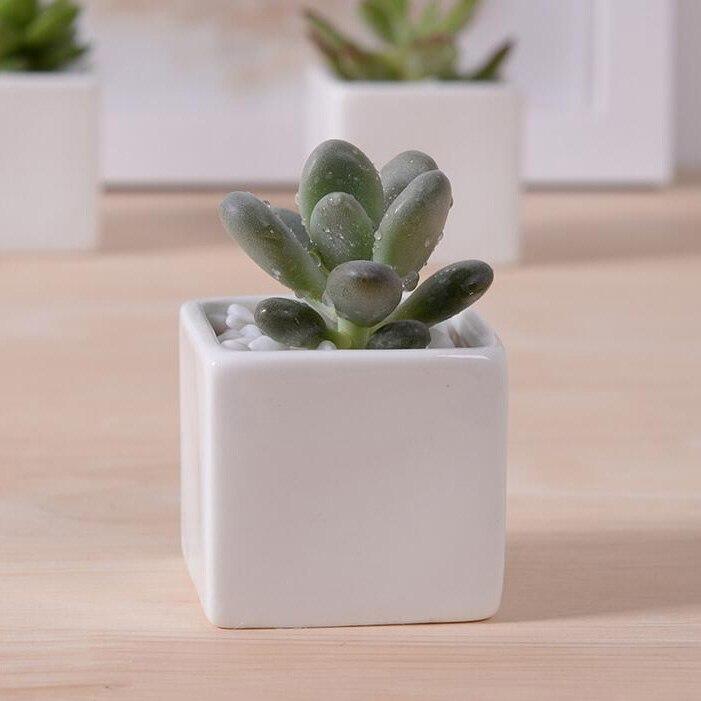 Where To Buy Ceramic Planters Part - 17: Hot Sale Small Indoor Ceramic Flowerpot Rectangular Bonsai Pot Desktop  Decor White Ceramic Planter For Succulent Garden Supplies