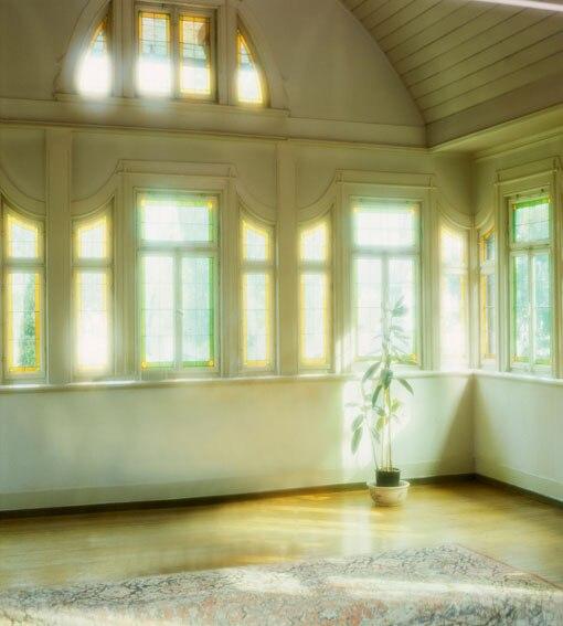 Allenjoy 10*20feet(300*600CM) Photography Background Sunshine Carpet Disk galinha pintadinha kids
