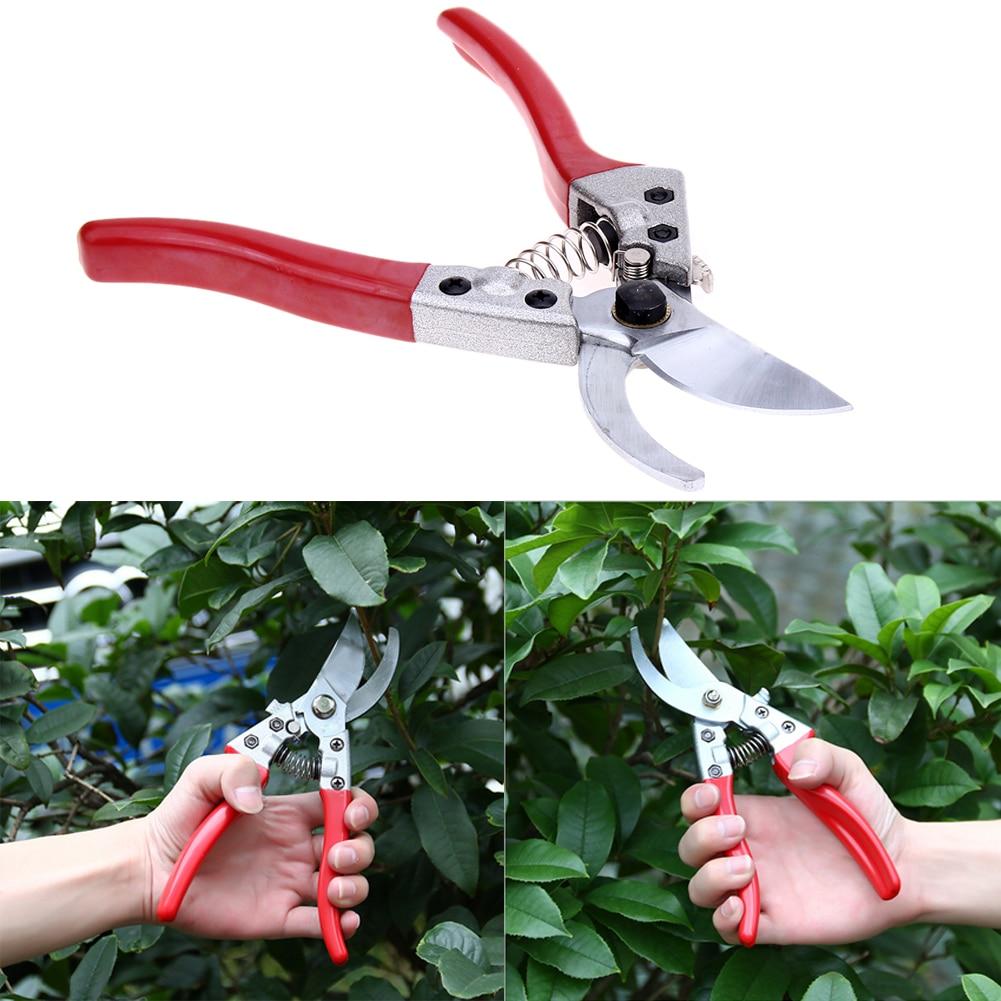 Pruners garden shears horticulture fruit tree shears for Gardening tools secateurs