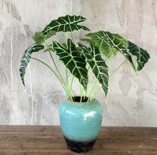 5 pieces Alocasia Leaf Leaves Ivy Wedding Flower Arrangment Artificial Floral Event Party Free Shipping