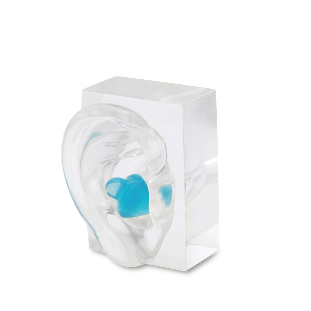 1 쌍 투명 아크릴 귀 모델 데모 귀 금형 보청기 디스플레이 및 귀 인상 연습-에서귀 케어부터 미용 & 건강 의  그룹 3