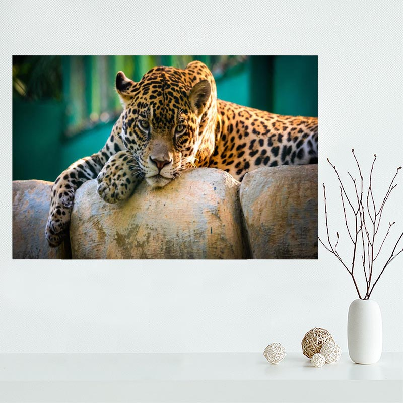 Poster-Paintings Leopard Decoration Canvas Wall-Art Unframed Modern-Picture Living-Room