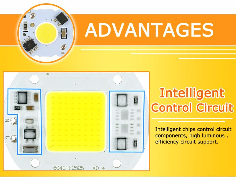 COB LED Lamp Chip 10W 15W W 30W 50W LED COB Bulb Lamp 2V IP65 Smart IC Driver Cold/ Warm White LED Spotlight Floodlight 2