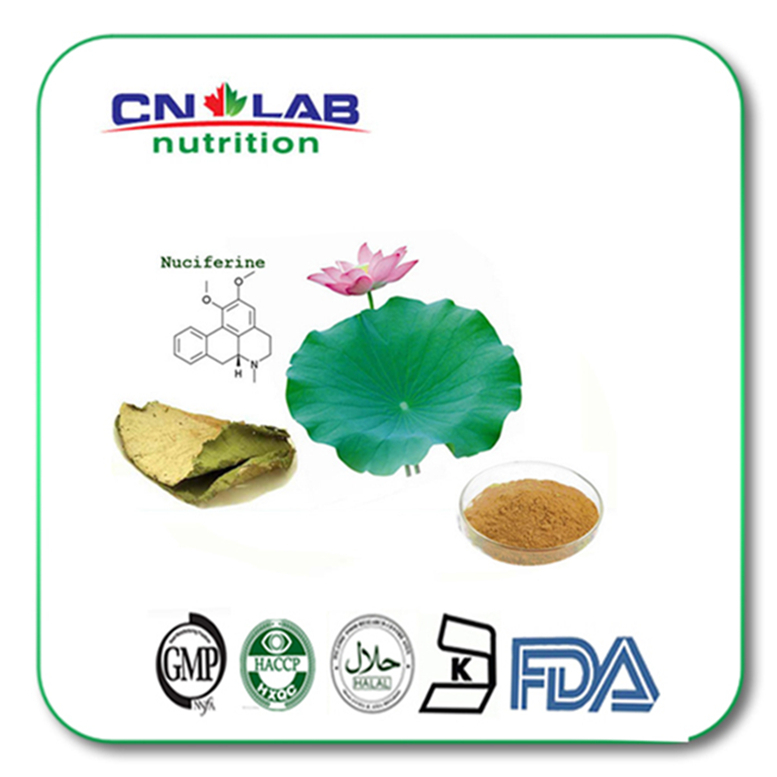 Factory price Herbal medicine weight loss Lotus leaf extract powder natural weight loss ingredients herbal powder extract for slimming healthily