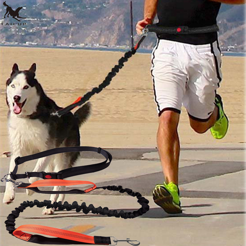 [TAILUP] Dogs Leash Running Elasticity Hand Freely Pet Products Dogs Harness Collar Jogging Lead and Adjustable Waist Rope CL153 hands free dog leash