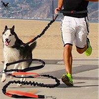 [TAILUP] guinzaglio per cani running elasticità mano liberamente prodotti per animali domestici collare per imbracatura collare da Jogging e corda regolabile in vita CL153
