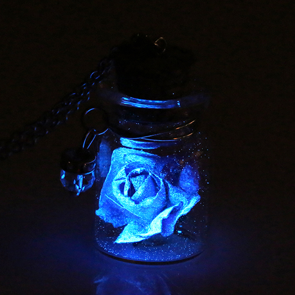Vintage Luminous Glow In The Dark Flower Pendant Necklace Fluorescent Glass Wish Bottle Chain Necklace Gift Jewelry