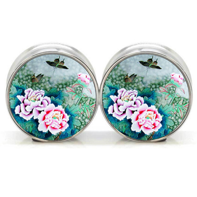 1 pair Asian Garden stainless steel night owl plug tunnels double flare ear plug gauges body piercing jewelry