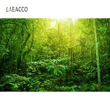 Laeacco Forest Tropical Jungle Rain Green Trees Shrub Wallpaper Natural Scene Photo Background Photography Backdrop Studio