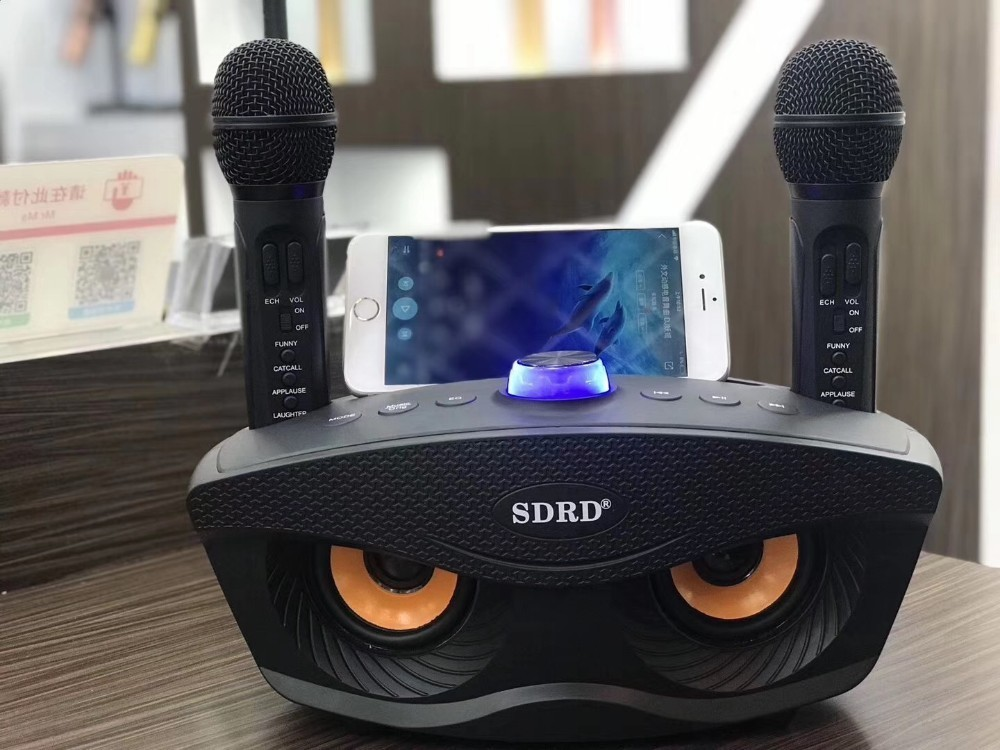 SD306 Dual Bluetooth Speaker With 2 Wireless Microphones Outdoor Family KTV Stereo Mic Big Sound 20W SDRD Sd 306 Speaker Set in Microphones from Consumer Electronics