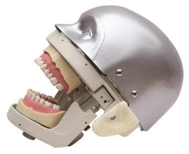 Simulador dental manequim cabeça fantasma demonstrações exercícios práticos