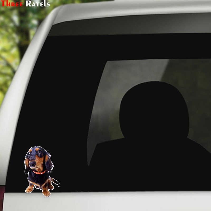 Three Ratels LCS431# 10.5x15см прекрасная собака полноцветные наклейки на авто наклейки на машину наклейка для автомобиля автонаклейка стикеры