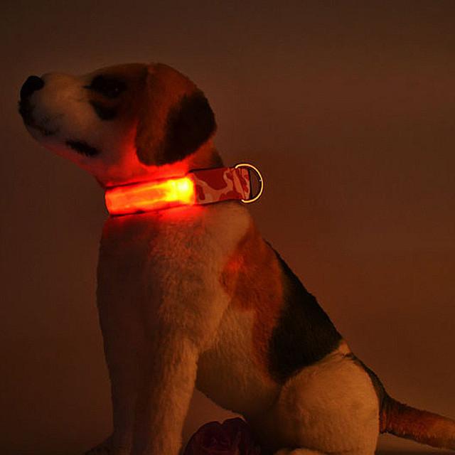 Adjustable Luminous Fluorescent Collars