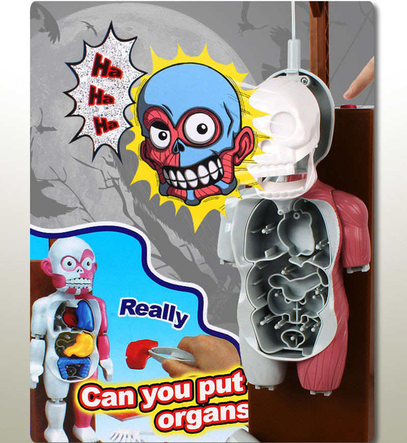 Funny Simulation Human Organs 3D Puzzles Assembled Scary Human Body Model Halloween Tricky Joke Toy Novelty & Gag Toys 8