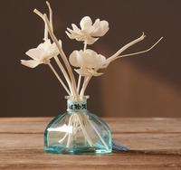 Modern minimalist glass vase ornaments home decorations living room bedroom table Aromatherapy small vase