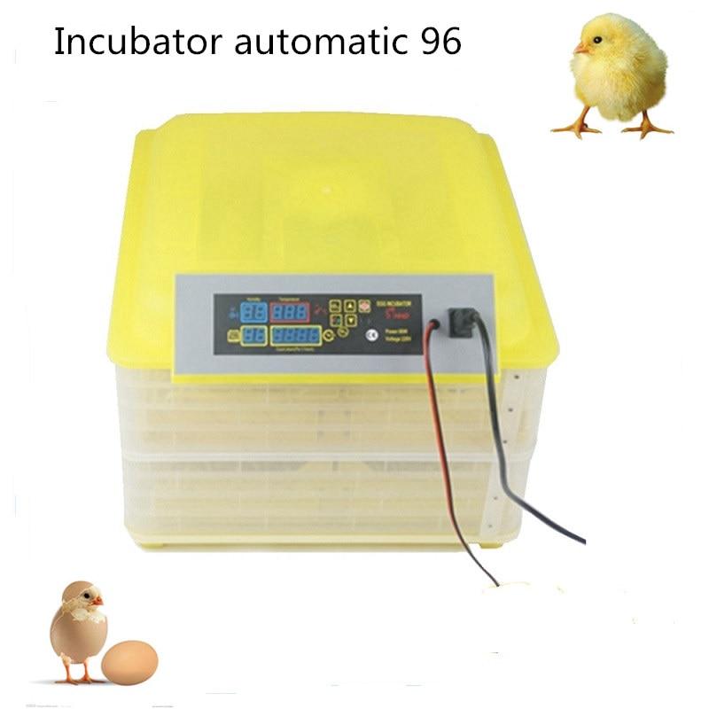 96 Chicken Eggs Incubator Hatching Machines Mini Automatic Egg Incubator  Egg Breeding Equipment DL-96A wheat breeding for rust resistance