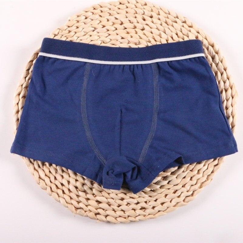 2Pcs/Lot Boys Underwear Pure Color Kids Shorts Panties Cotton Baby Children Boxer for Teenager Underpants 2-10Y 1