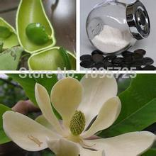 100% NATURAL GRIFFONIA SEED EXTRACT 20% 5 HTP