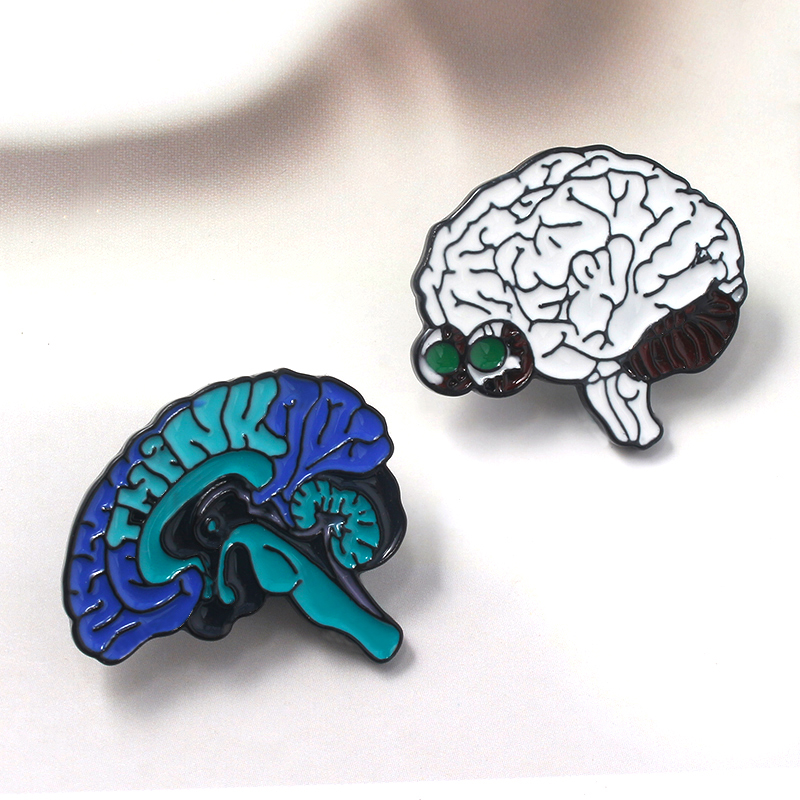 Human Organs Pins Brooces Anatomical Brain Neurology Heart Lung Badge Brooch for Women Men Lapel Pin Jewelry in Brooches from Jewelry Accessories