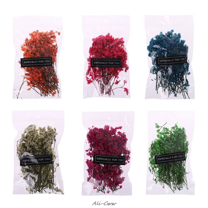 1 Bag Real Pressed Dried Flowers Floral Plants Embellishments For DIY Scrapbooking Card Making Art Craft Decoration(China)