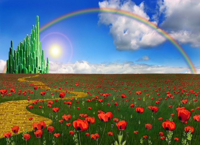 Emerald City Rainbow Field Of Flowers Background Vinyl Cloth High