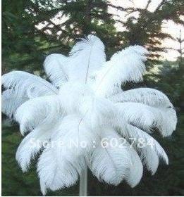 Doprava zdarma čistě bílé pštrosí peří 50ks 45-50cm 18-20 palců chocholy svatební peří