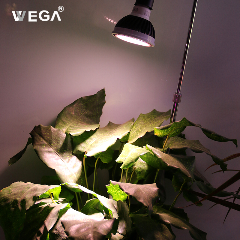 WEGA Full Spectrum LED Plant Growth Lamp 12W Hand Switch Lamp Indoor Potted Vegetable Flowers Landscape Plants Fill Light